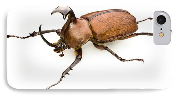 Rhinoceros Beetle Phone Case by Lawrence Lawry