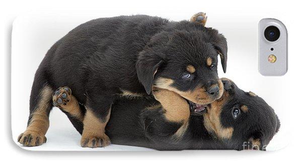 Rottweiler Pups IPhone Case by Jane Burton