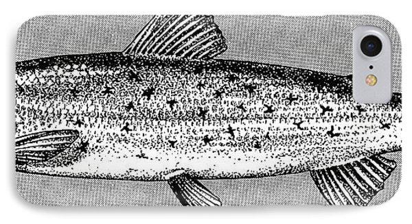 Salmon Phone Case by Granger