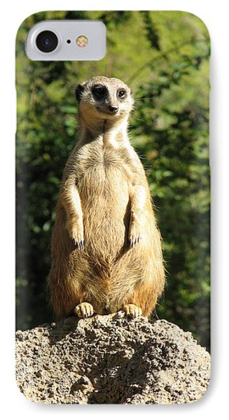 IPhone Case featuring the photograph Sentinel Meerkat by Carla Parris