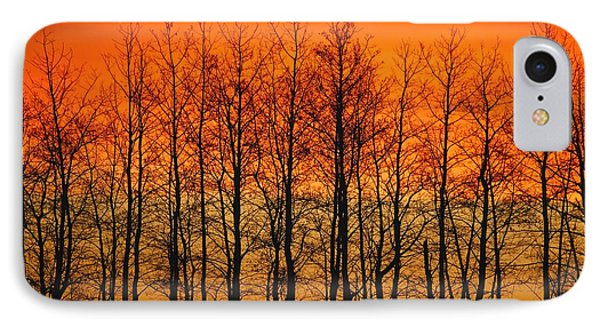 Silhouette Of Trees Against Sunset IPhone Case by Don Hammond