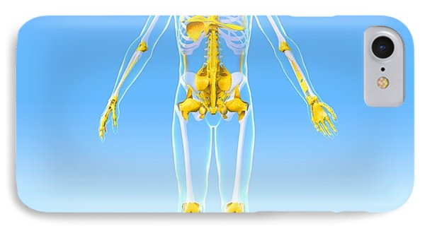 Skeleton And Ligaments, Artwork Phone Case by Roger Harris