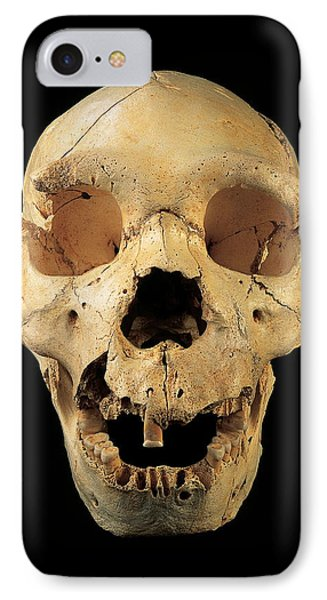 Skull 5, Sima De Los Huesos IPhone Case