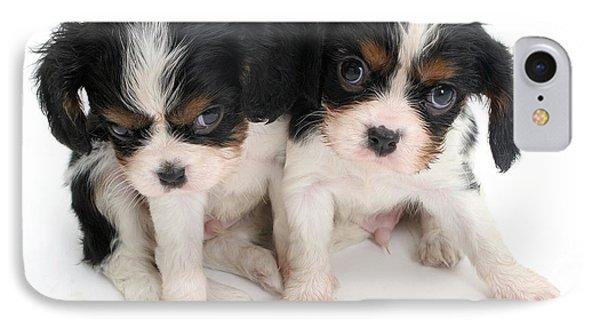 Spaniel Puppies Phone Case by Jane Burton