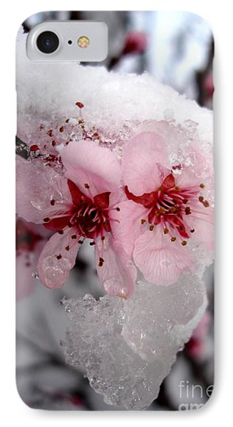 IPhone Case featuring the photograph Spring Blossom Icicle by Kerri Mortenson