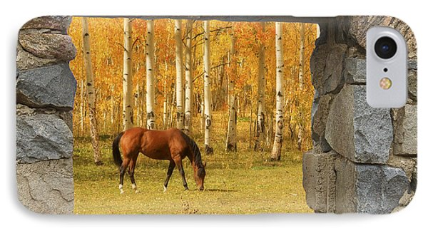 Stone Window View And Beautiful Horse Phone Case by James BO  Insogna