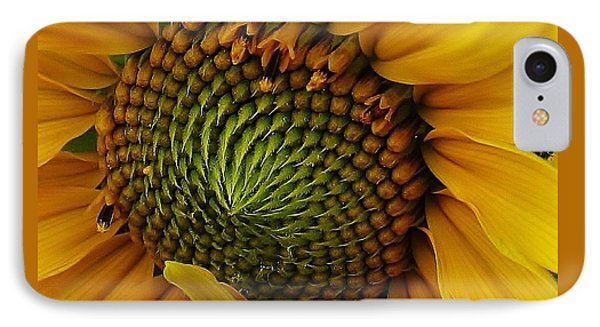 Sunflower Close Up IPhone Case by Bruce Bley