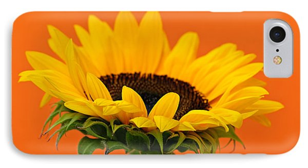 Sunflower Closeup IPhone 7 Case by Elena Elisseeva