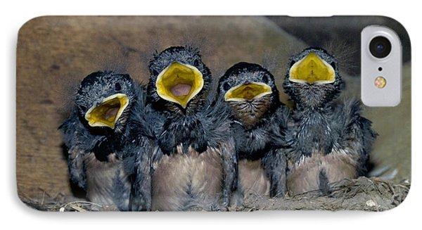 Swallow Chicks Phone Case by Georgette Douwma