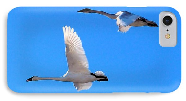 Swans On Blue Sky Phone Case by Don Mann