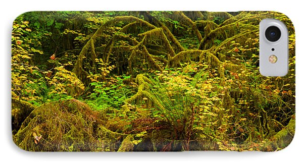 Temperate Rain Forest Phone Case by Adam Jewell