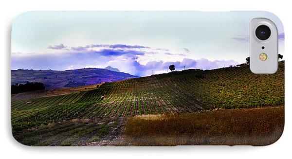 Wine Vineyard In Sicily Phone Case by Madeline Ellis