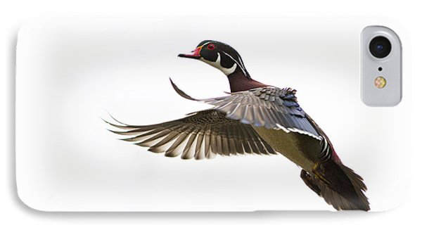 Wood Duck Phone Case by Mircea Costina Photography