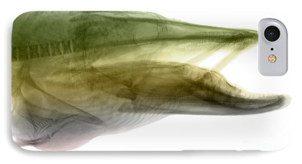 X-ray Of Muskie Phone Case by Ted Kinsman