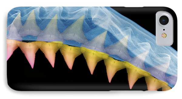 X-ray Of Shark Jaws Phone Case by Ted Kinsman
