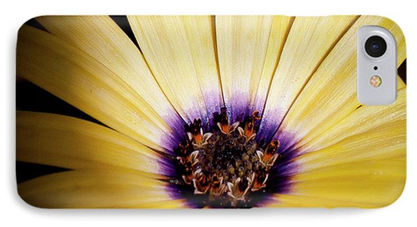 Yellow Daisy Phone Case by David Patterson