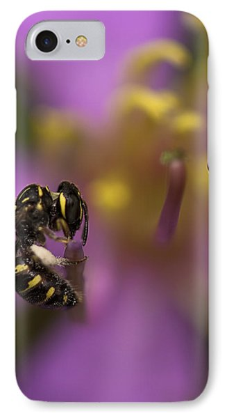 Yellow Faced Bee Phone Case by Zoe Ferrie