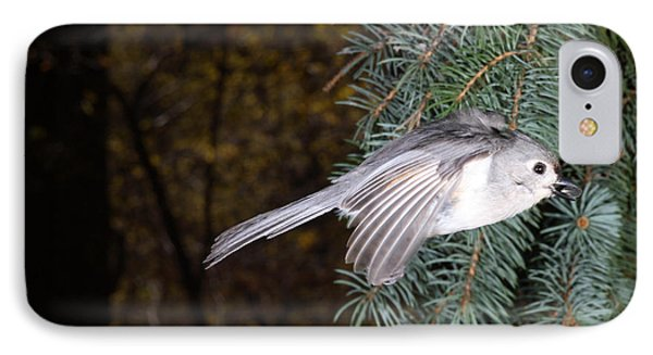 Tufted Titmouse In Flight IPhone Case by Ted Kinsman
