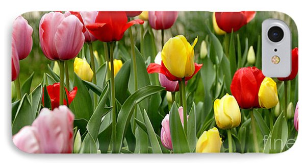 Tulip Garden University Of Pittsburgh  Phone Case by Thomas R Fletcher