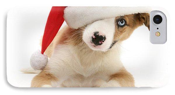 Border Collie Puppy Phone Case by Jane Burton