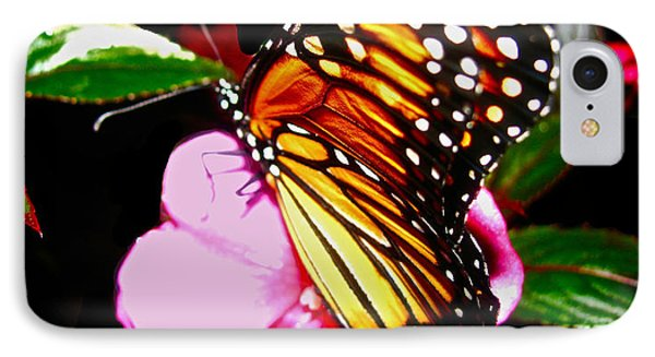 Butterfly Collection  Phone Case by Debra     Vatalaro