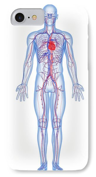 Cardiovascular System, Artwork Phone Case by Sciepro