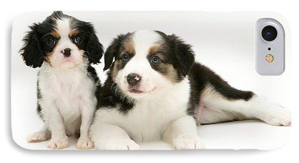 Puppies Phone Case by Jane Burton