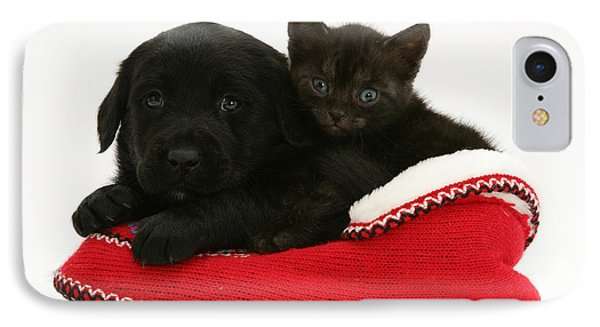 Kitten And Pup IPhone Case