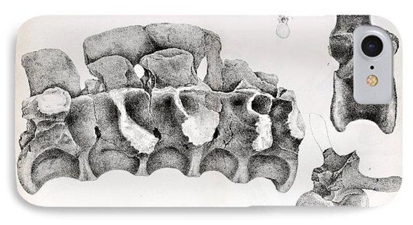 1824 Buckland's Megalosaurus Spine Phone Case by Paul D Stewart