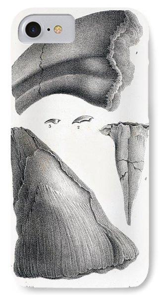 1833 Iguanodon Mistaken Spike Horn Fossil Phone Case by Paul D Stewart