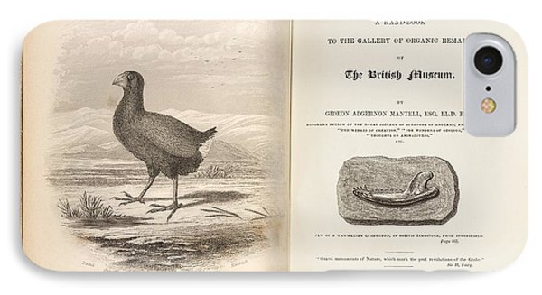 1851 Takahe Mantell's Petrifactions Book IPhone Case by Paul D Stewart