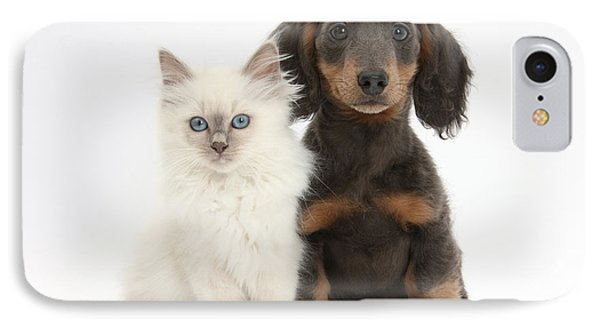 Blue-point Kitten & Dachshund Phone Case by Mark Taylor