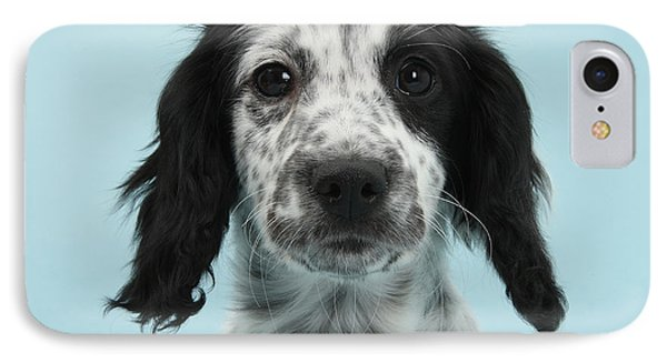 Border Collie X Cocker Spaniel Puppy Phone Case by Mark Taylor