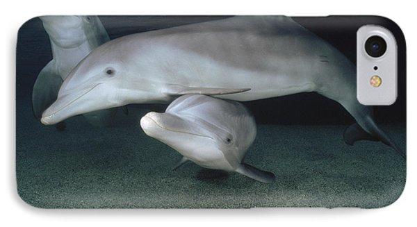 Bottlenose Dolphin Underwater Trio Phone Case by Flip Nicklin