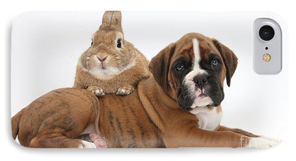 Boxer Puppy And Netherland-cross Rabbit Phone Case by Mark Taylor