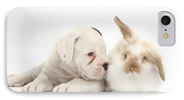 Boxer Puppy And Young Fluffy Rabbit IPhone Case by Mark Taylor