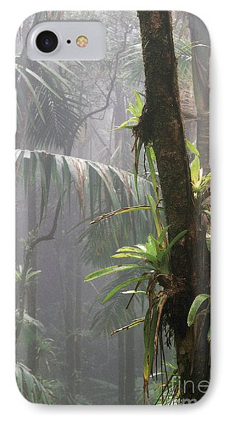 Bromeliads El Yunque National Forest Phone Case by Thomas R Fletcher