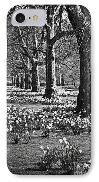 Daffodils In St. James's Park IPhone Case