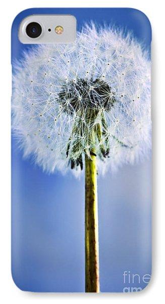 Dandelion Phone Case by Elena Elisseeva