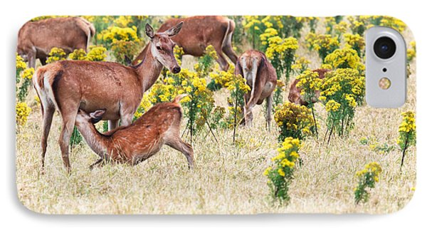 Deers Phone Case by MotHaiBaPhoto Prints