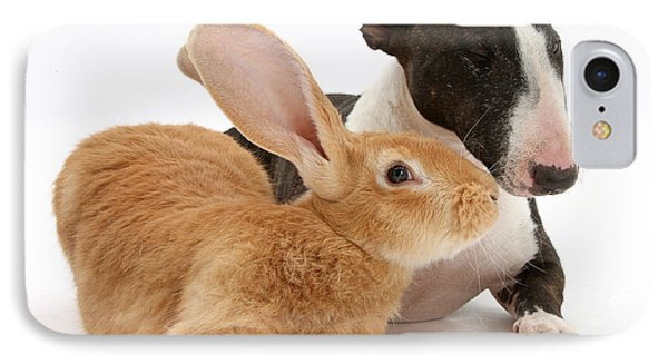 Flemish Giant Rabbit And Miniature Bull IPhone Case by Mark Taylor