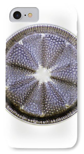 Fossil Diatom, Light Micrograph Phone Case by Frank Fox