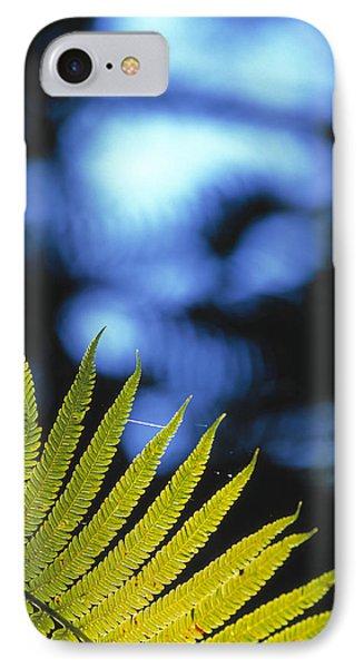 Hapu'u Fern IPhone Case by G. Brad Lewis