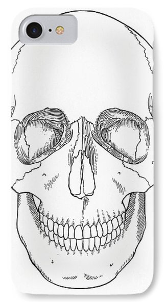 Illustration Of Anterior Skull IPhone Case by Science Source