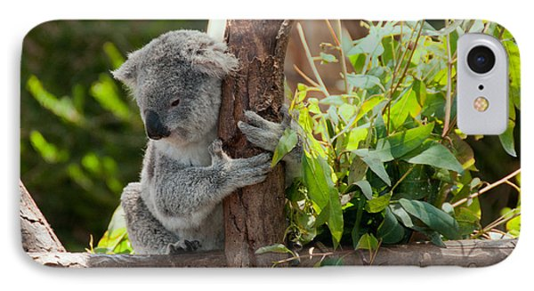 Koala Phone Case by Carol Ailles