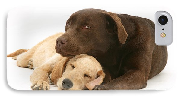 Labradoodle And Labrador Retriever Phone Case by Jane Burton