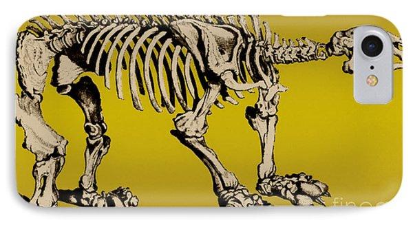Megatherium, Extinct Ground Sloth Phone Case by Science Source