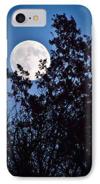 Moon Night Phone Case by Jiayin Ma