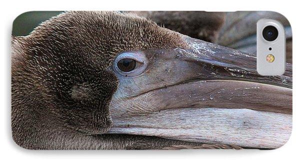Pelican Phone Case by Paul Marto