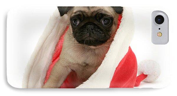 Pug Puppy Phone Case by Jane Burton
